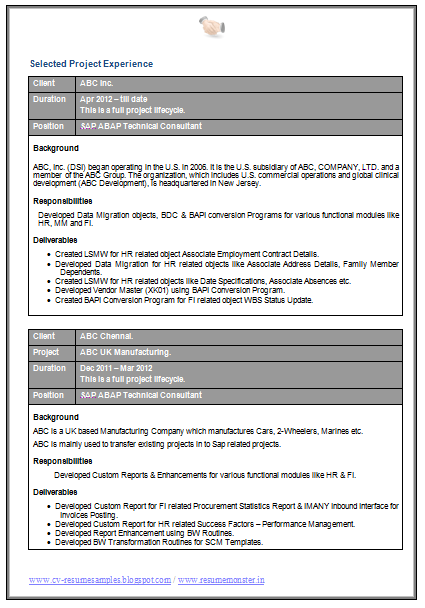 msc cv template free download  2