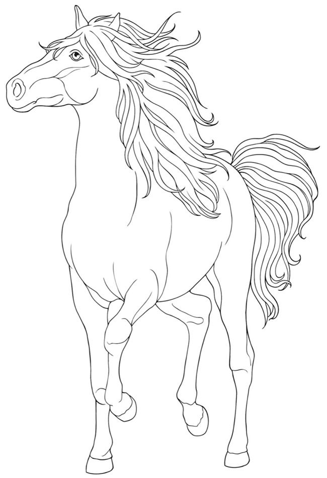 Dover Creative Haven Horse Coloring Page 2 u2026 Pinteresu2026 - best of welsh pony coloring pages