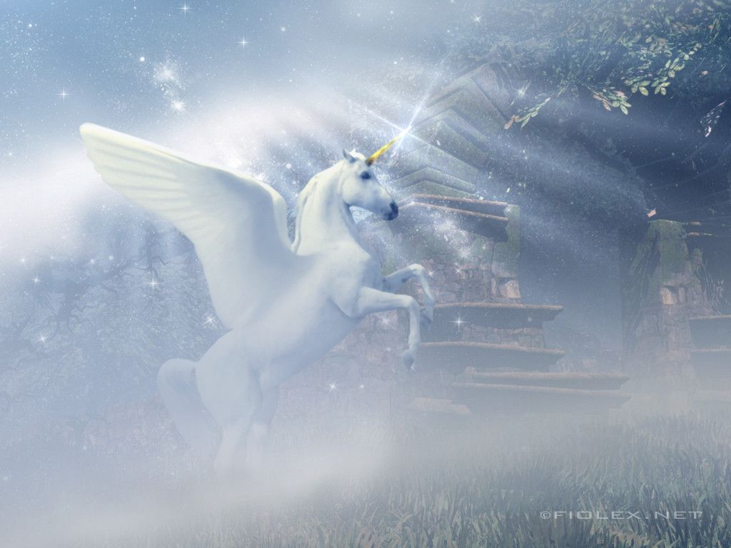 Image Detail For Fiolex Free Gallery Winged Unicorn Wallpaper