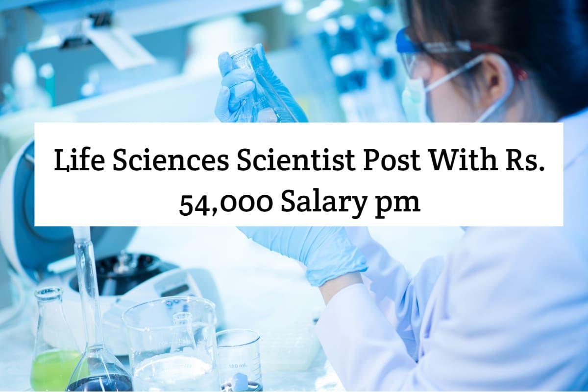 Icmr Nimr Life Sciences Scientist Msc Life Sciences Candidates Can Walk In For Scientist Non Medical Jobs At Icmr Ni Life Science Medical Jobs Chemistry Jobs