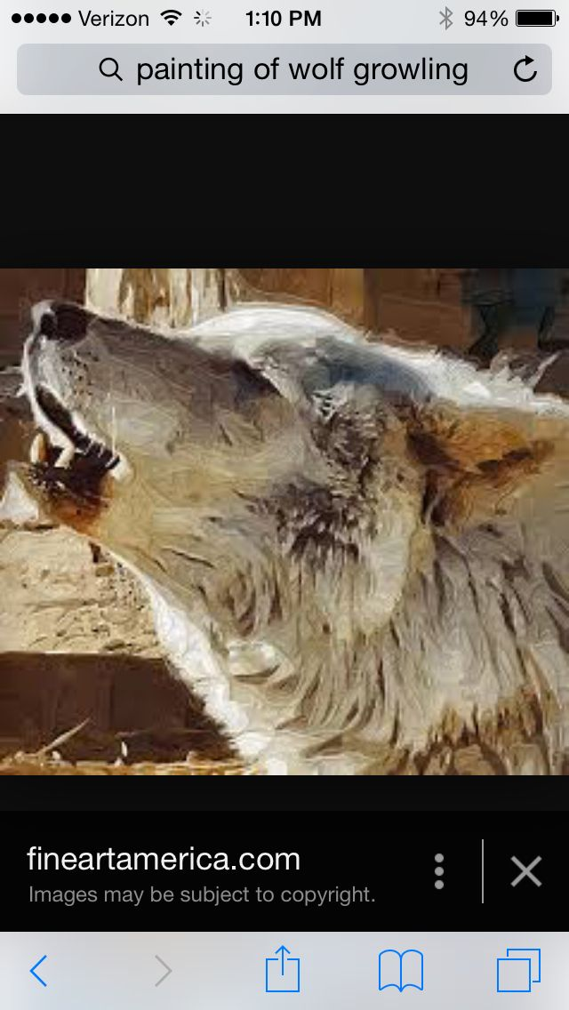 Pin By Noelle Hobbes On Art Wolf Growling Wolf Painting