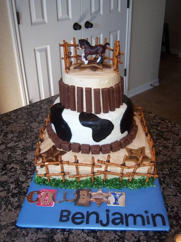 Swell Cowboy Cake So Simple But Still Cute Cowboy Cakes Cake Funny Birthday Cards Online Inifofree Goldxyz