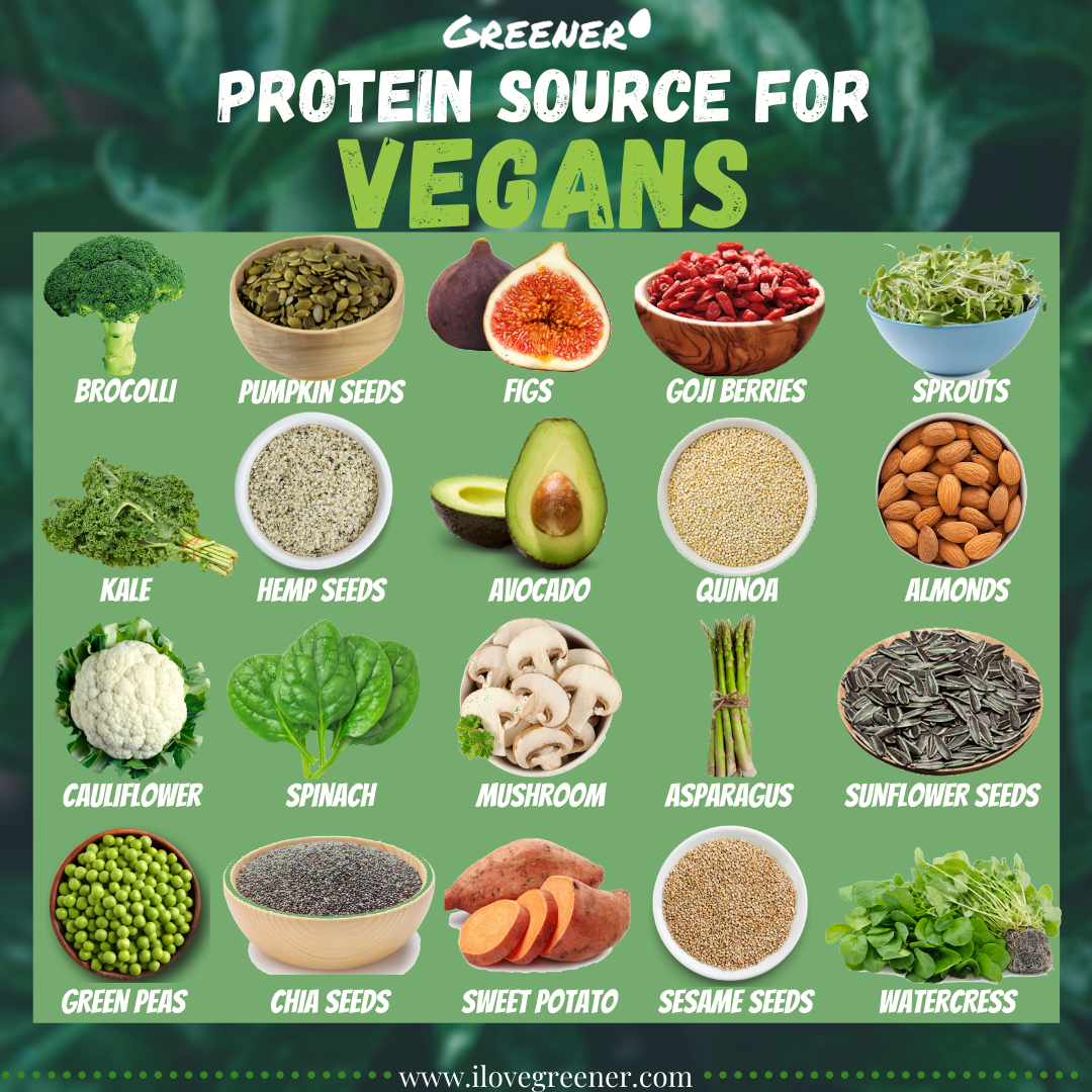 **PROTEIN SOURCE FOR VEGANS by GREENER** Greener - Smart Food Planner - Kitchen tool that makes food preparing simple. Be the first one to use this app by visiting our website www.ilovegreener.com and fill in your name and email address. #vegans #vegan #veganfood #plantbased #vegansofig #veganlife #govegan #veganism #veganfoodshare #veganlifestyle #crueltyfree #whatveganseat #vegano #vegancommunity #veganrecipes #vegetarian #veganfoodporn #plantbaseddiet #veganeats #veganfoodie #healthyfood