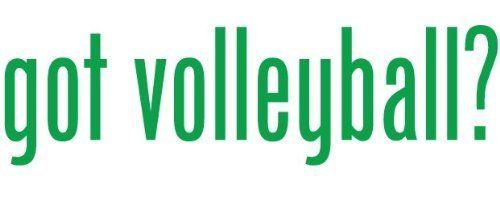 Got Volleyball - Decal / Sticker by bumpinstickers, http://www.amazon.com/dp/B004OT5Z3K/ref=cm_sw_r_pi_dp_Nmjjsb03A2791