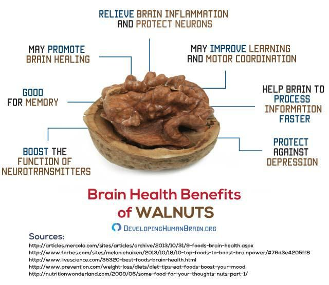 What is the role of walnuts in our health httpwww what is the role of walnuts in our health httpdevelopinghumanbraindelicious and healthy brain food recipes forumfinder Choice Image