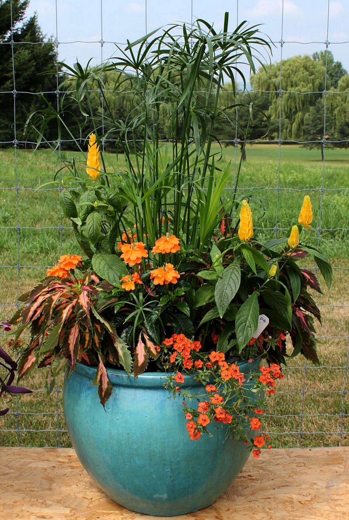 Astounding Beautiful Fall Container Gardening Ideas For