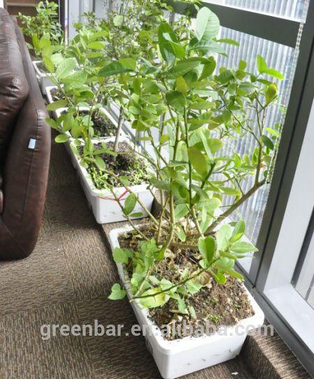 Great Automatically Watering Pot High Tech Garden Pot Photo, Detailed About  Automatically Watering Pot High Tech