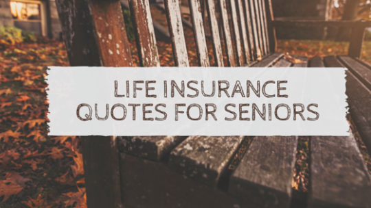 Quick Life Insurance Quote Captivating If You Want Quick Life Insurance Quotes For Seniors  Get Quote