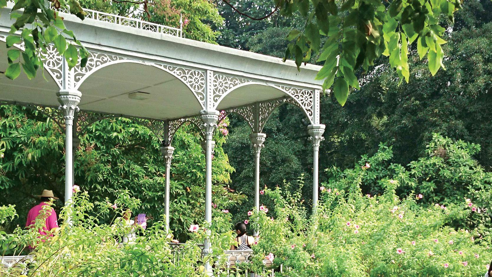 10 Must Do S In Singapore Singapore Botanic Gardens Visit Singapore Singapore