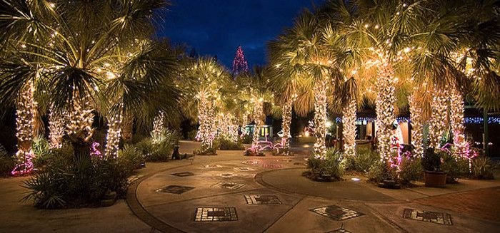 11 Holiday Light Festivals In South Carolina You Won 39 T Want To Miss This Year Zoos Lights And