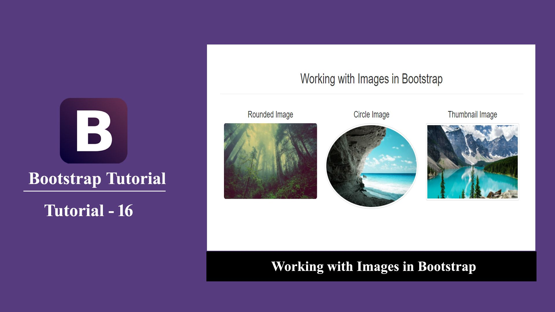 Images in Bootstrap Educational videos, Html tutorial