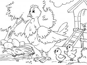 Animales De Granja Dibujos Para Colorear Buscar Con Google