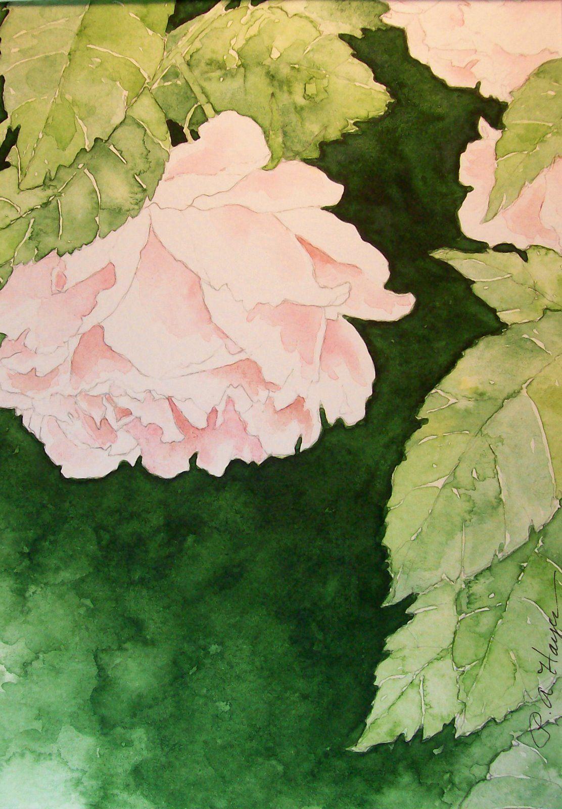 Pink English Roses Aquarelle Art Watercolor English Roses