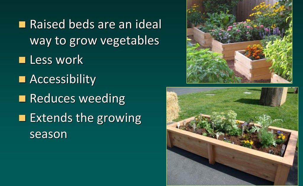 Garden Center Epsom Growing Vegetables