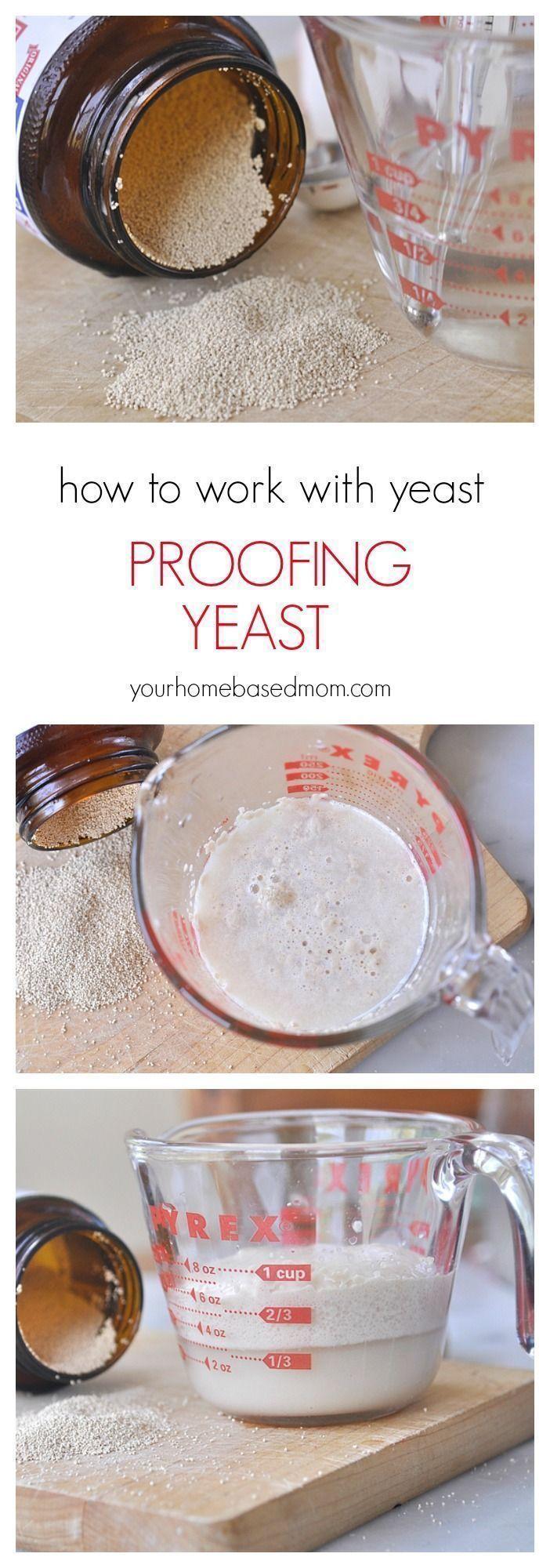 How to Proof Yeast #cookingandhouseholdhints