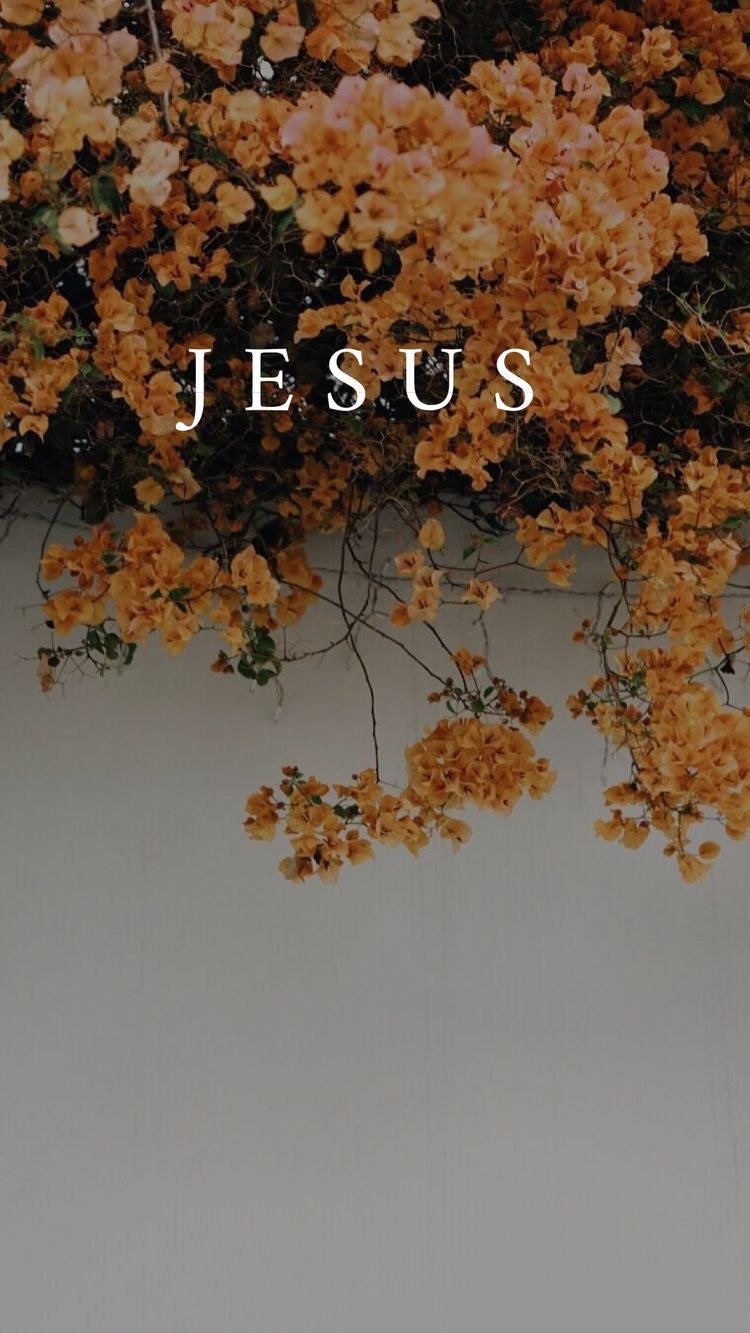𝙋𝙞𝙣𝙩𝙚𝙧𝙚𝙨𝙩𝙪𝙙𝙭𝙣𝙩𝙢𝙖𝙩𝙩𝙚𝙧 Jesus wallpaper, Christian