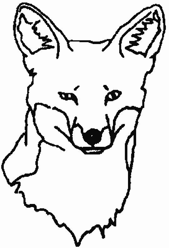 Hipster Coloring Fox Coloring Pages Kleurplaten Dieren