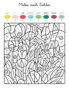 malennachzahlentulpen 600×800 pixel … | malen nach zahlen, malen nach zahlen kinder und malen