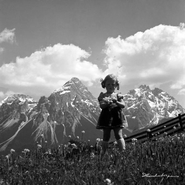 Luisi auf der Blumenwiese III in 2020 | Bilder, Bergbilder