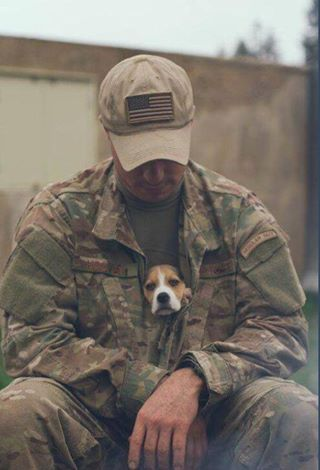 God bless our soldiers and their four legged friends