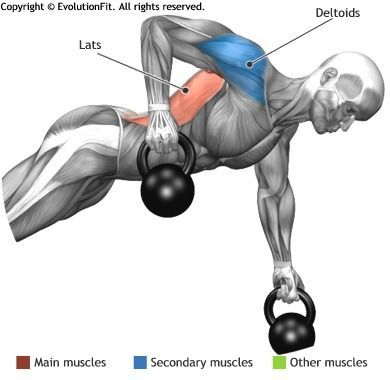 lats  renegade kettlebell increase muscle fitness
