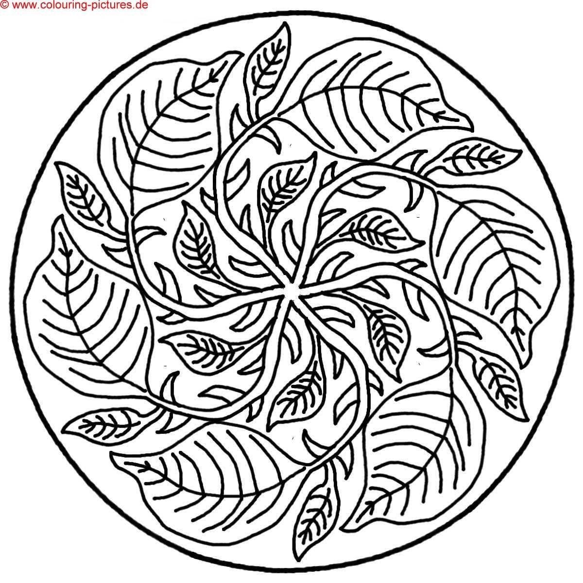 mandala vorlagen blatt  mandala coloring pages adult