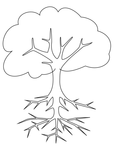 Tree with Roots Coloring page | Trees | Pinterest | Roots, Daycare ...
