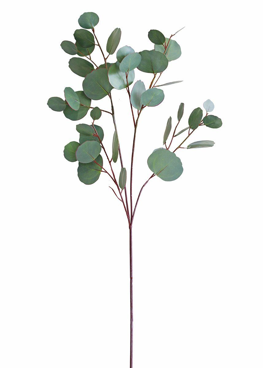 Real Touch Silver Dollar Eucalyptus 30 Tall Silver Dollar Eucalyptus Artificial Flowers Artificial Foliage
