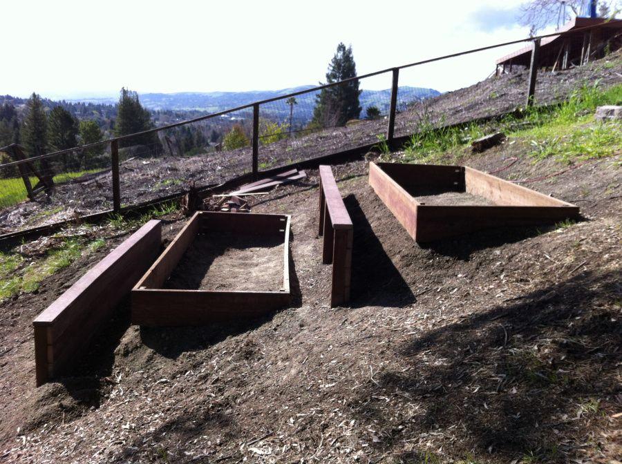 My Backyard Farm (With images) Sloped garden, Backyard