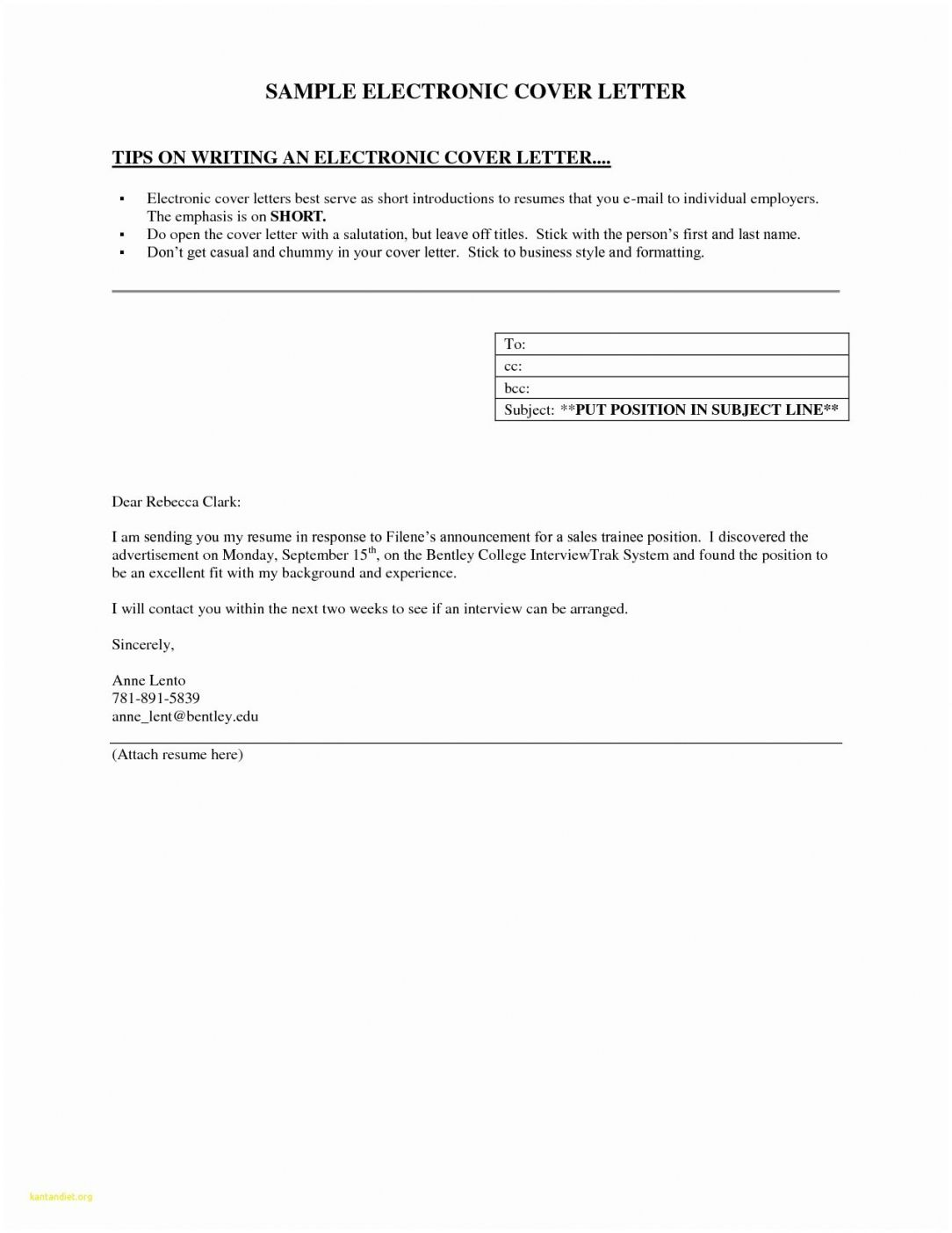 25 Email Cover Letter In 2020 Cover Letter For Resume Resume