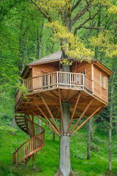 Das sind die 24 schönsten Baumhaushotels in Deutschland