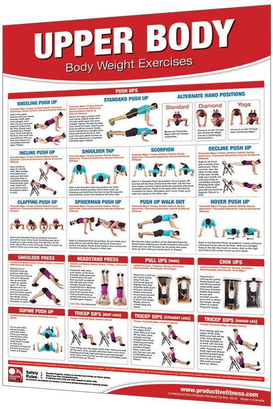24 X 36 Laminated Fitness Poster Wall Chart Body Weight
