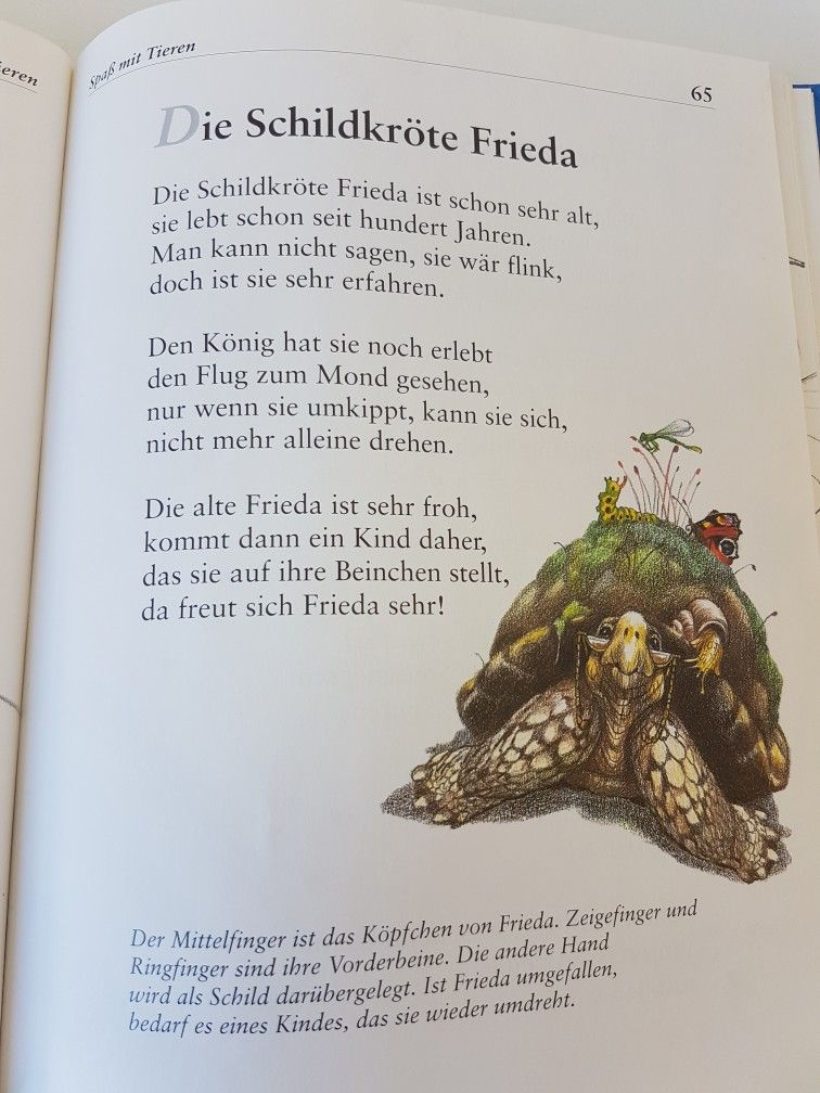Die Schildkröte Frieda #fingerspiel #krippe #kita #kindergarten ...