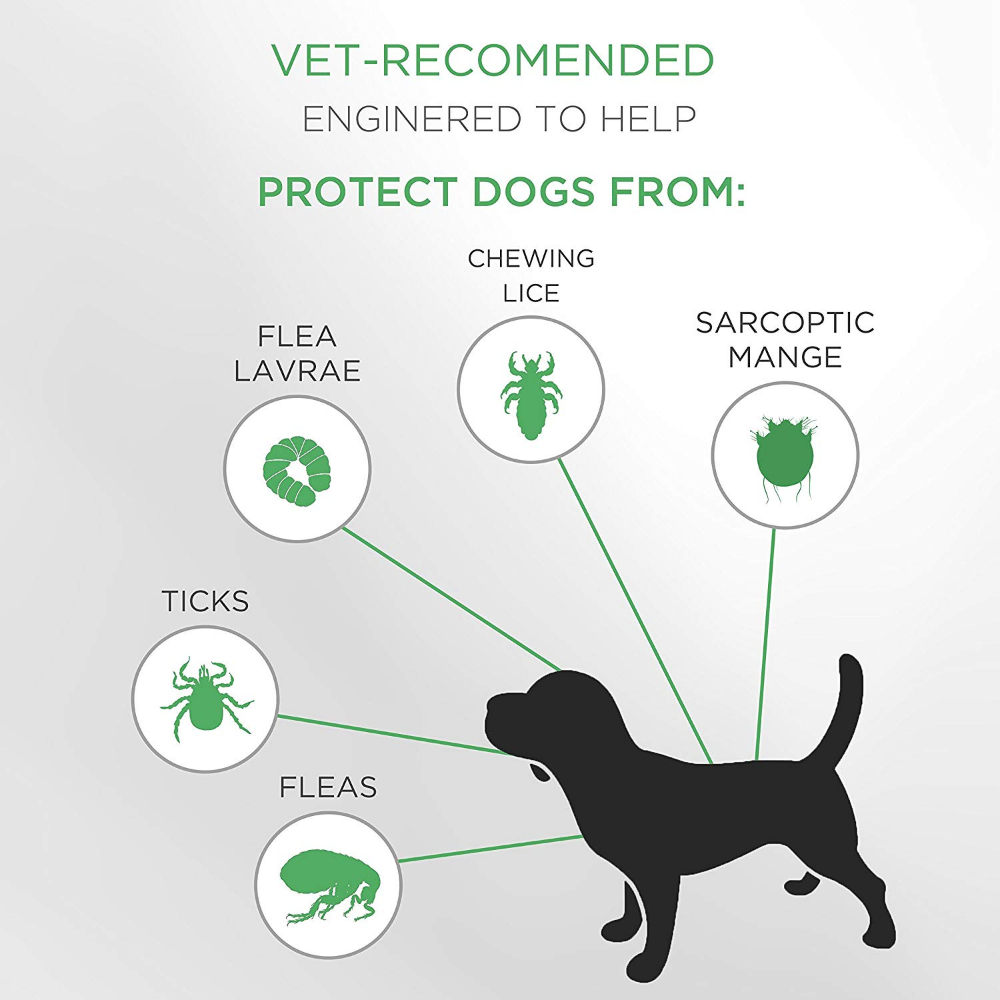 Seresto Flea And Tick Dog Collar And It S Alternatives Ticks On Dogs Fleas Flea Tick