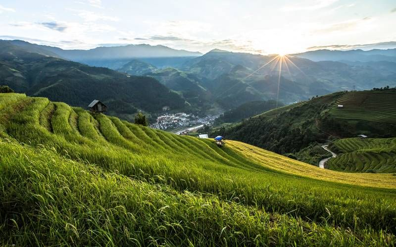 Bali-rice-fields-Travel-January-GETAWAY1215.jpg | Best ...