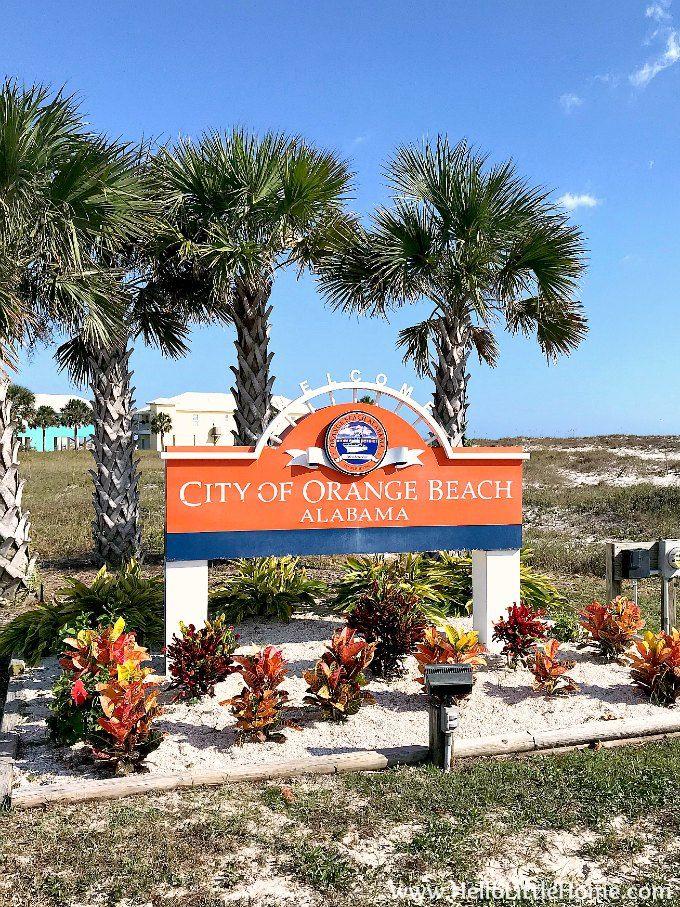 Best Thing To Do In Orange Beach, AL!