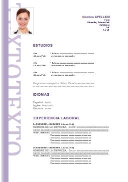 Curriculum Vitae Practicas Curriculum Curriculum Ideal Home