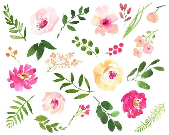 Watercolor Clipart Roses Flower Clipart Floral Watercolor Wedding