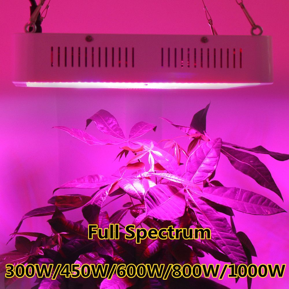 Mastergrow Vollspektrum 300 Watt 600 Watt 800 Watt 1000 Watt 1200 Watt 1500 Watt 1600 Watt 1800 Watt 2000 Watt Plant Lighting Led Grow Lights Led Plant Lights