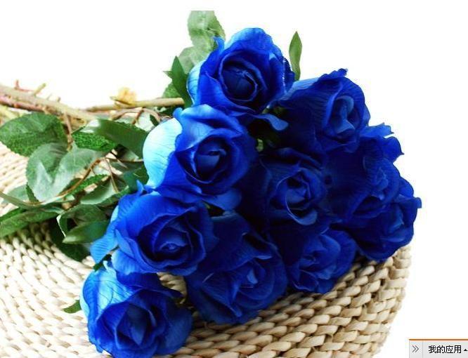 Un jour m riterais je un beau bouquet de rose bleue l 39 avenir peut t - Un beau bouquet de fleurs ...