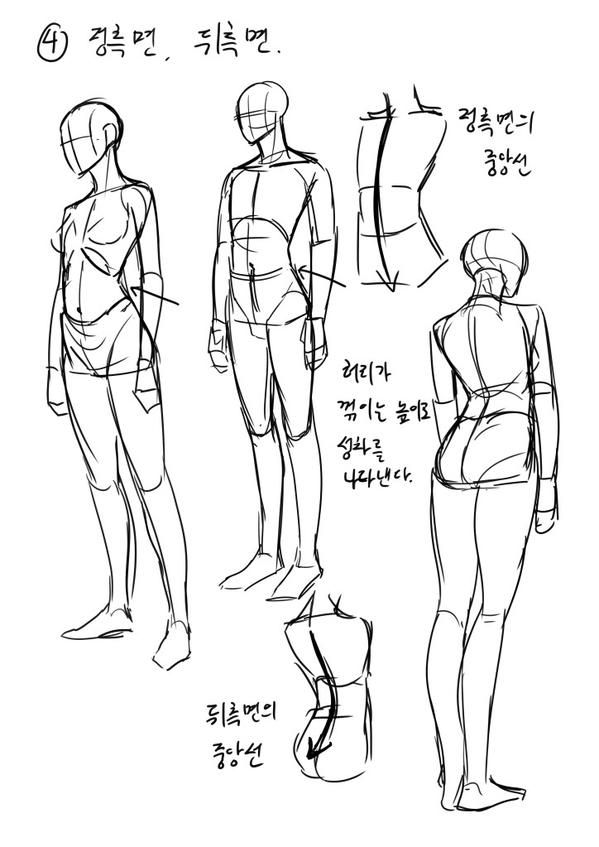 13) 트위터 | Anatomy | Pinterest | Anatomy, Drawings and Art reference