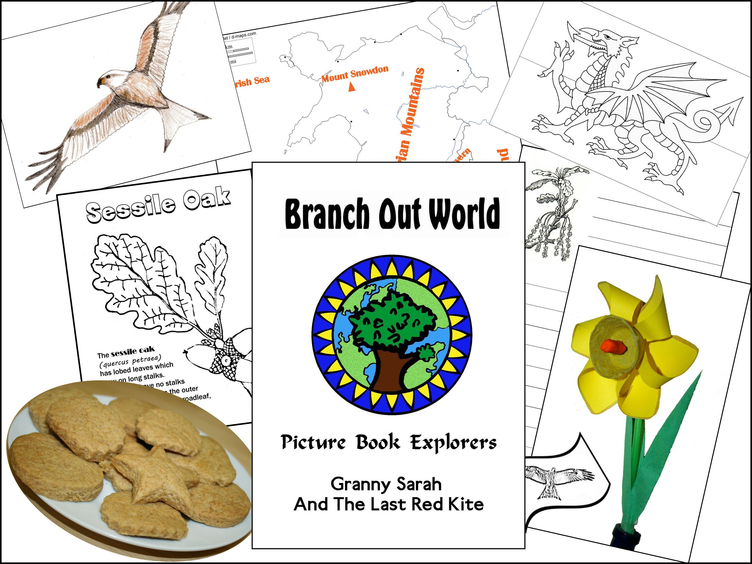 Learn About Oak Trees And Much More In This Cross