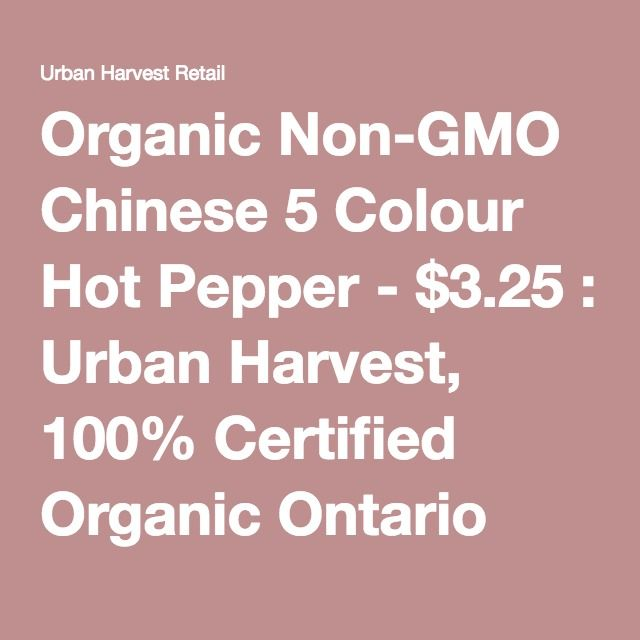 Organic Non-GMO Chinese 5 Colour Hot Pepper - $3.25 : Urban Harvest, 100% Certified Organic Ontario Seeds Since 1997