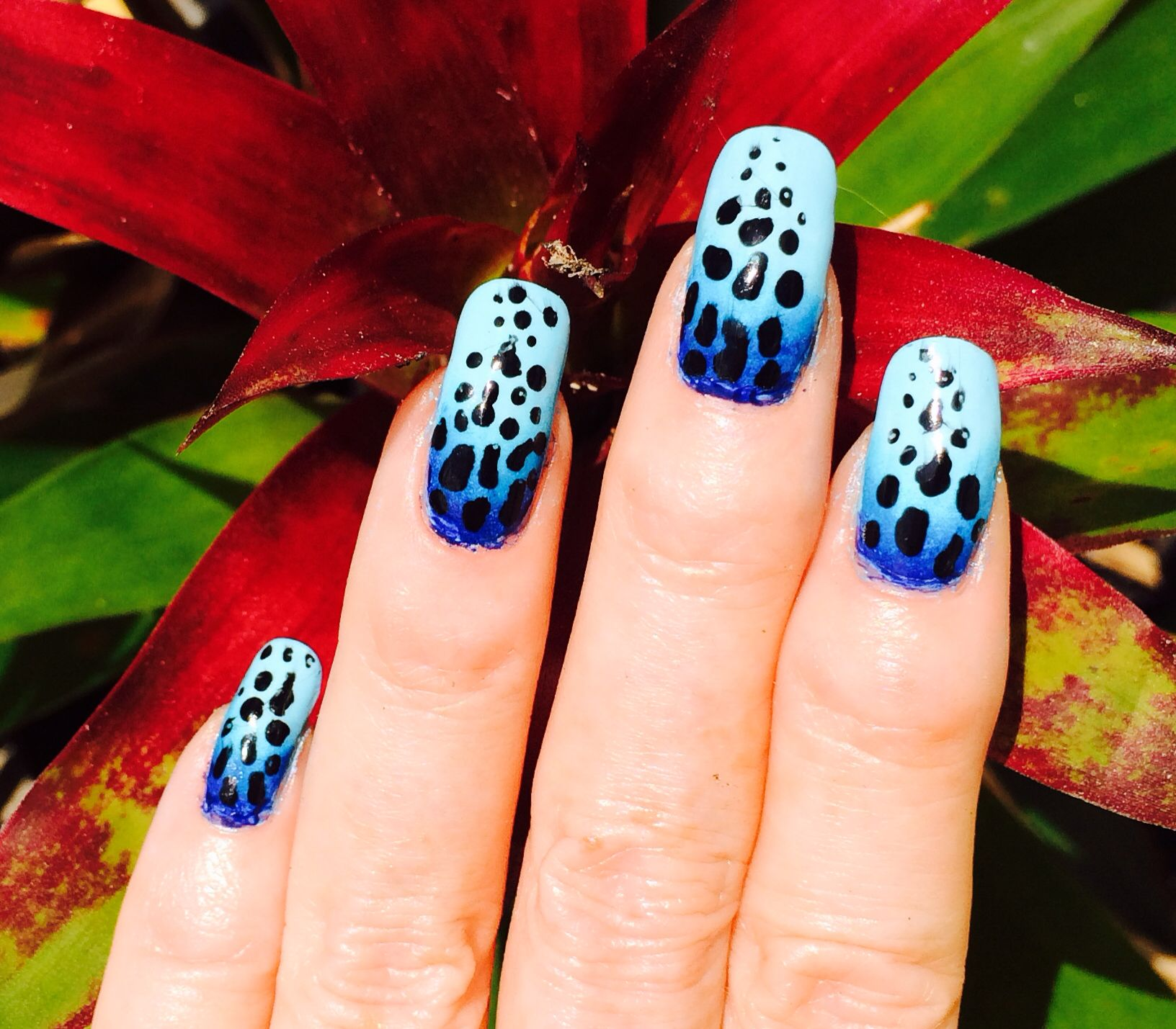 Inspired by nature - Blue poison dart frog   Nails   Pinterest ...