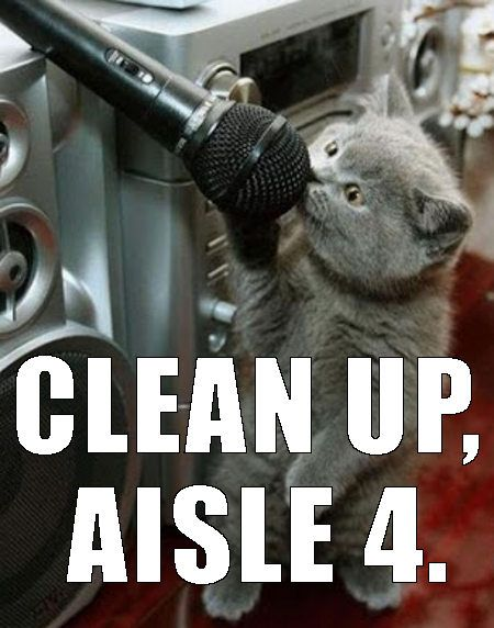 90cf01c1a1310fbffef68dd9a1894dea we all do that when given a live mic, right? cutesy catstuff