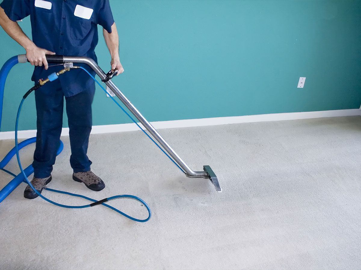 how to steam clean carpets home cleaning tips pinterest best