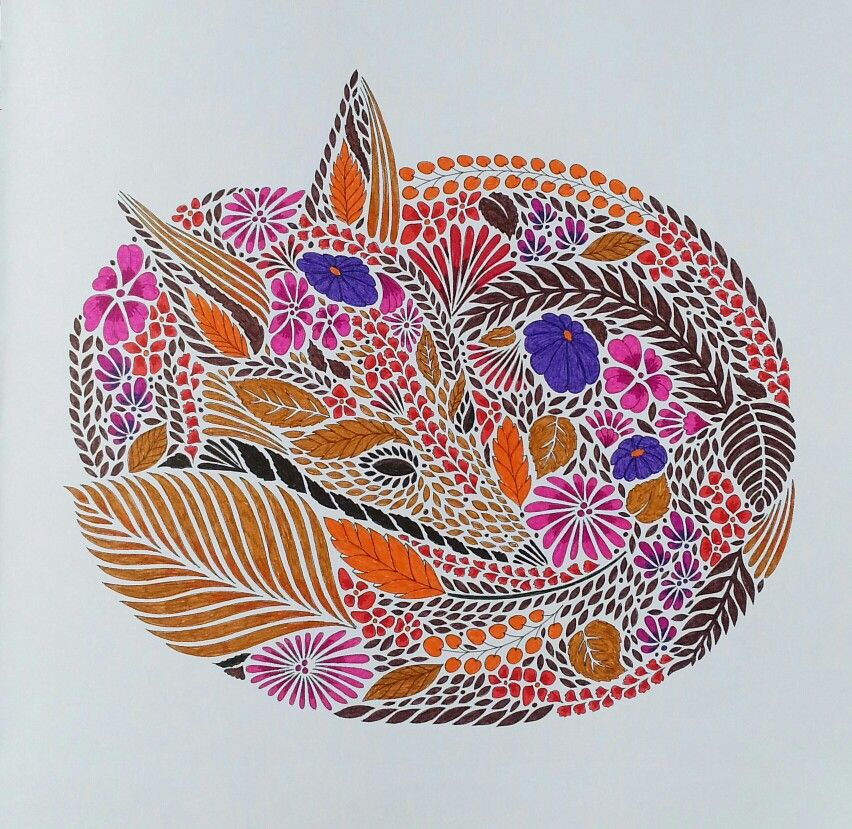 Animal Kingdom Colouring Raccoon : Flowers and insects from millie marottas animal kingdom.