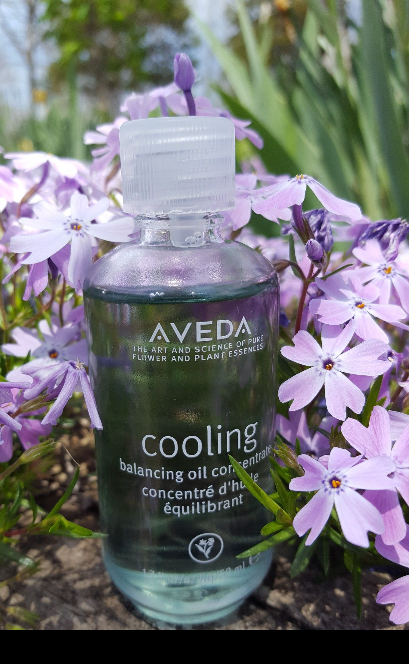 Aveda Cooling Oil Aveda Pure Products Plant Science