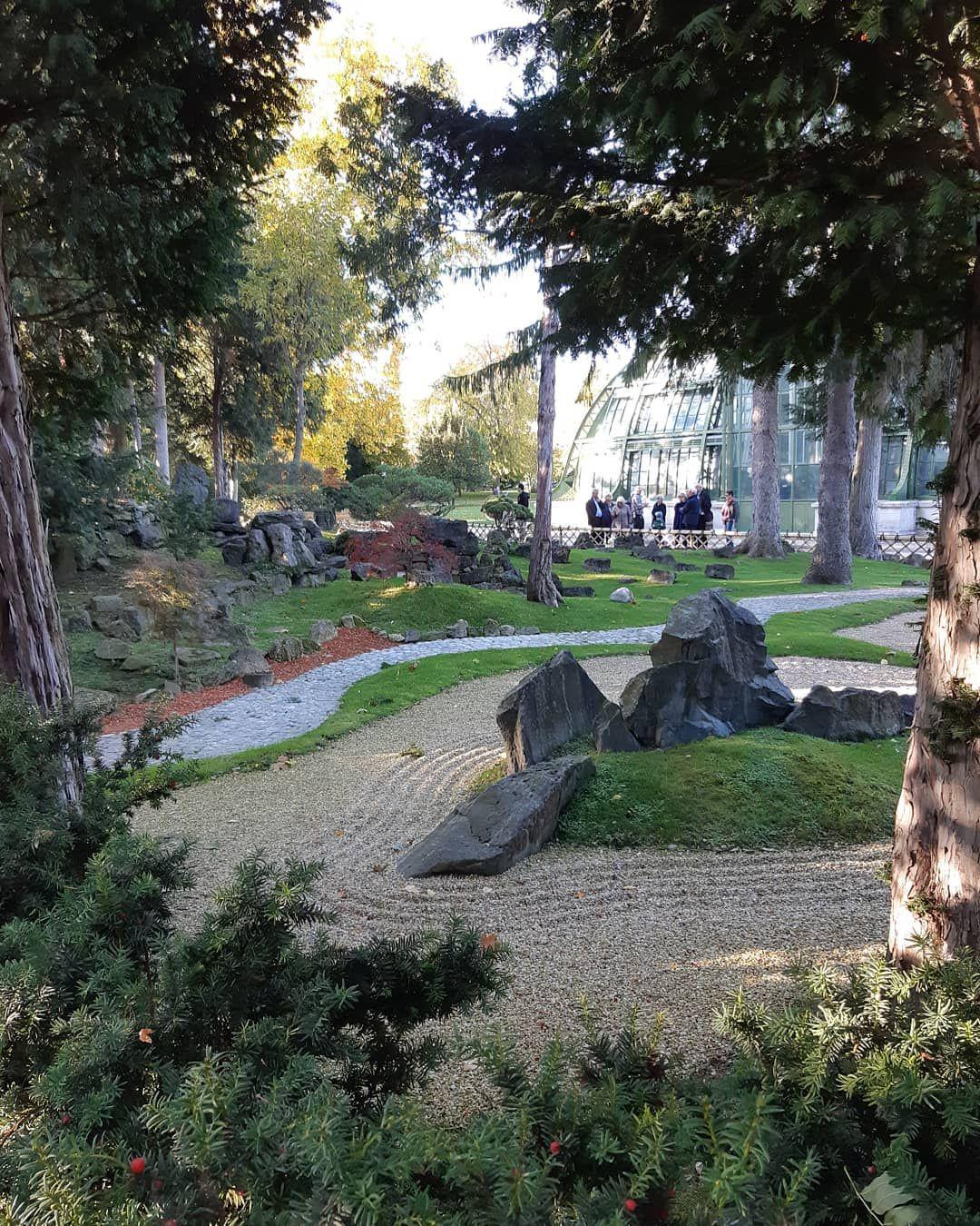 Eine Kleine Ruheinsel In Der Hektik Der Grossstadt Japanischergarten Schonbrunn Wien Vienna Nice Ruheinsel Relax Enjoy Japanischer Garten Garten Japan
