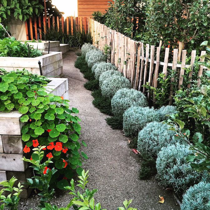 Fiona Brockhoff Design Yencken Material S And Planting Concepts Spa Landscaping Plants Landscape Design